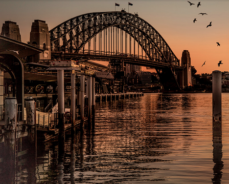 syd harbour bridge