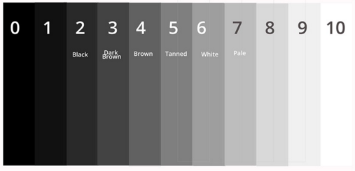 how the camera reads skin tones