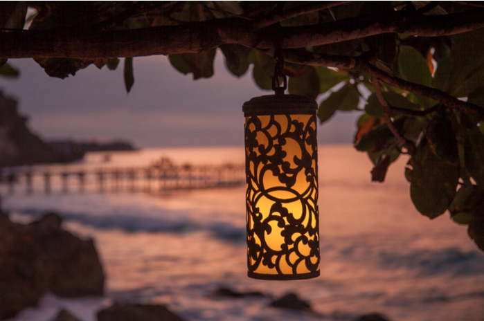 A delicate lantern hanging from a tree branch with the ocean in the background demonstrating how to frame an image