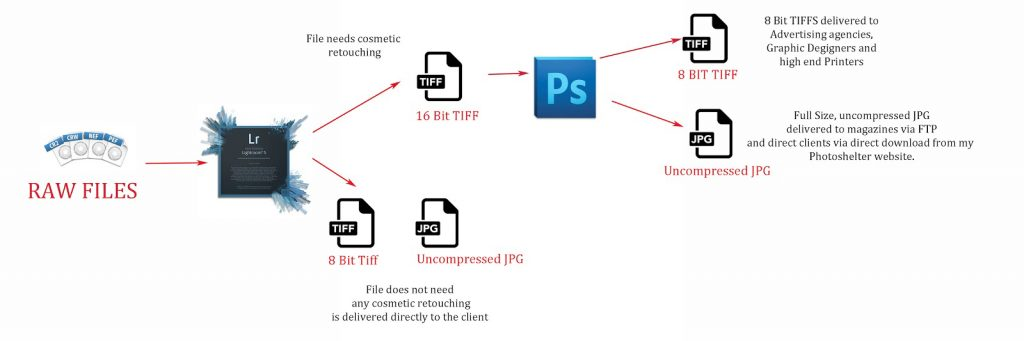 diagram of Gina's workflow and file compression based on the destination of the file